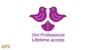 Divi Professional Lifetime Access