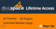 Divi Space Lifetime Access